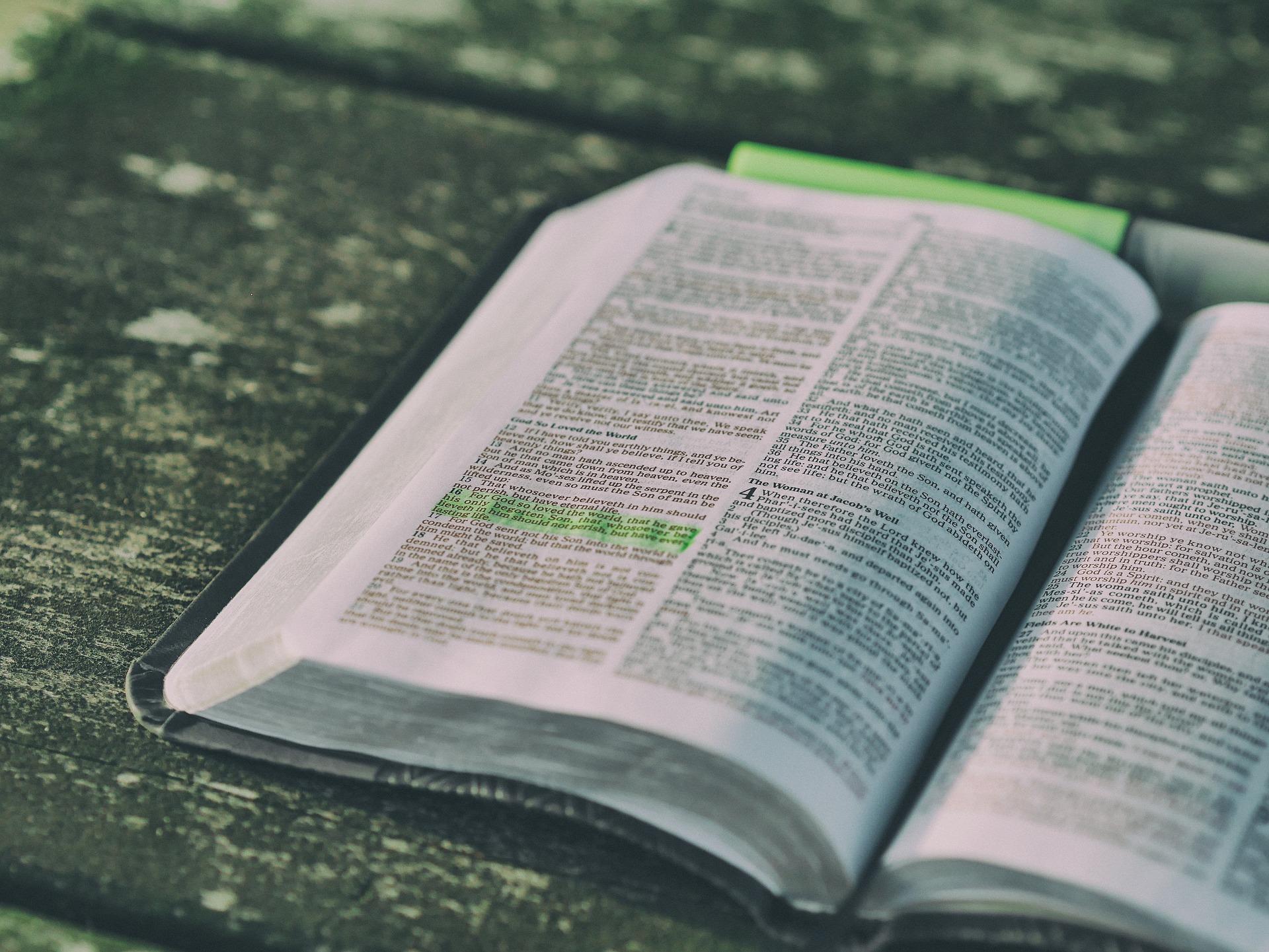 Bible for sermon